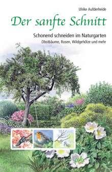 Ulrike Aufderheide: Der sanfte Schnitt, Buch