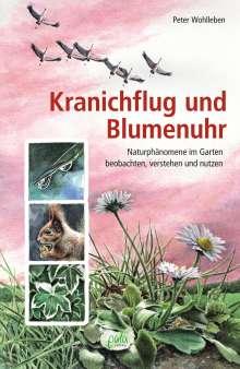 Peter Wohlleben: Kranichflug und Blumenuhr, Buch