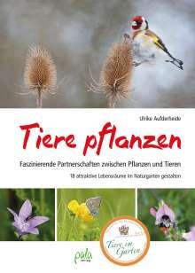 Ulrike Aufderheide: Tiere pflanzen, Buch