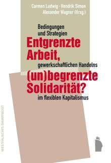 Entgrenzte Arbeit, (un-)begrenzte Solidarität?, Buch