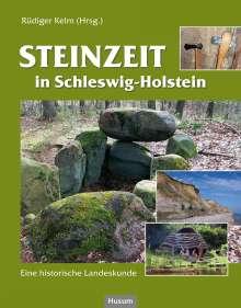 Steinzeit in Schleswig-Holstein, Buch
