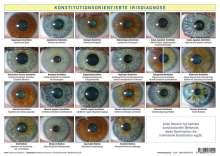 Friedemann Garvelmann: Konstitutionsorientierte Irisdiagnose, Diverse