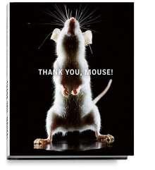 Heidi Koch: Thank You, Mouse!, Buch