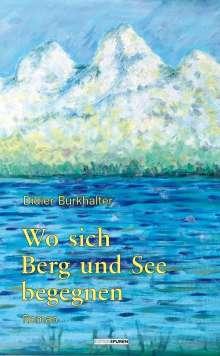 Didier Burkhalter: Wo sich Berg und See begegnen, Buch