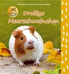 Heiderose Fischer-Nagel: Drollige Meerschweinchen, Buch