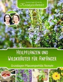 Elisabeth Engler: Heilpflanzen und Wildkräuter für Anfänger (Krautgeschwister), Buch