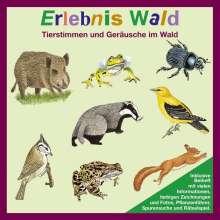Erlebnis Wald. CD, CD