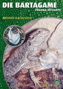 Andree Hauschild: Die Bartagame, Buch
