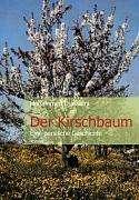 Mohammed Djassemi: Der Kirschbaum, Buch