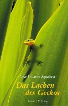 Jose E. Agualusa: Das Lachen des Geckos, Buch