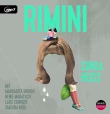 Sonja Heiss: Rimini, 2 MP3-CDs