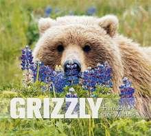 Matthias Breiter: Grizzly, Buch