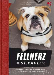 Simone Buchholz: Fellherz St. Pauli, Buch
