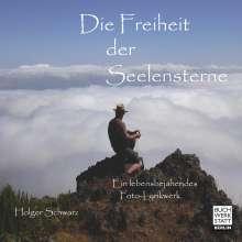 Holger Schwarz: Die Freiheit der Seelensterne, Buch