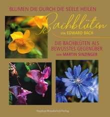 Martin Sinzinger: Bachblüten, Buch