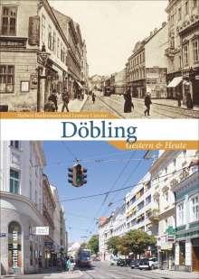 Herbert Biedermann: Döbling, Buch