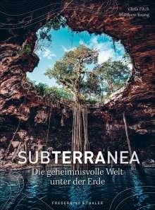 Chris Fitch: Subterranea, Buch