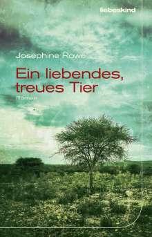 Josephine Rowe: Ein liebendes, treues Tier, Buch