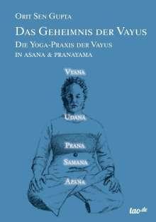 Orit Sen Gupta: Das Geheimnis der Vayus, Buch