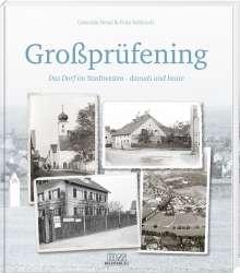 Fritz Rehbach: Großprüfening, Buch