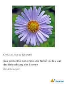 Christian Konrad Sprengel: Das entdeckte Geheimnis der Natur im Bau und der Befruchtung der Blumen, Buch