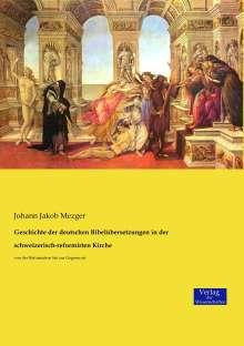 Johann Jakob Mezger: Geschichte der deutschen Bibelübersetzungen in der schweizerisch-reformirten Kirche, Buch