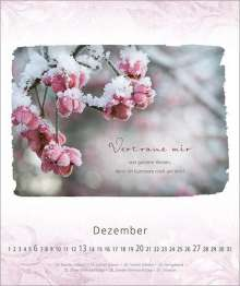 Sarah Young Ich Bin Bei Dir 2020 Postkartenkalender Diverse Jpc