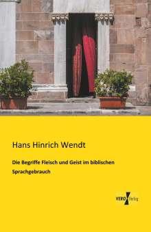 Hans Hinrich Wendt: Die Begriffe Fleisch und Geist im biblischen Sprachgebrauch, Buch