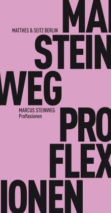 Marcus Steinweg: Proflexionen, Buch