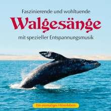 Walgesänge (mit spezieller Entspannungsmusik), CD