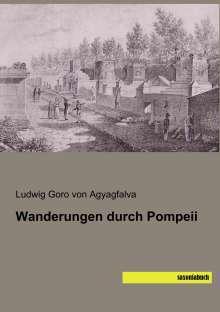 Ludwig Goro von Agyagfalva: Wanderungen durch Pompeii, Buch