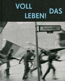Harald Hauswald: Voll das Leben, Buch