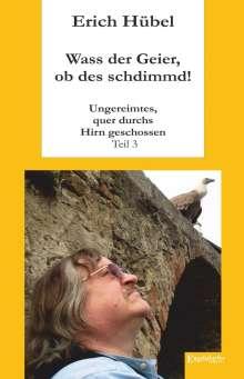 Erich Hübel: Wass der Geier, ob des schdimmd!, Buch