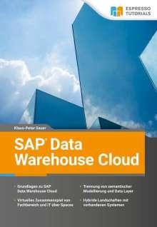 Klaus-Peter Sauer: SAP Data Warehouse Cloud, Buch