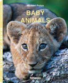 Michael Poliza: Baby Animals, Buch