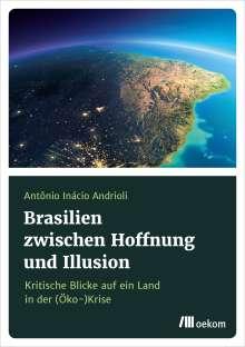Antônio Inácio Andrioli: Brasilien zwischen Hoffnung und Illusionen, Buch