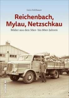 Gero Fehlhauer: Reichenbach, Mylau, Netzschkau, Buch