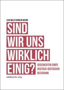 Ilka Wild: Sind wir uns wirklich einig?, Buch