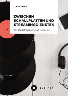 Lukas Linek: Zwischen Schallplatten und Streamingdiensten, Buch