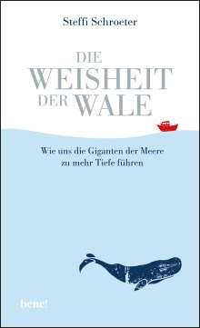 Steffi Schroeter: Die Weisheit der Wale, Buch