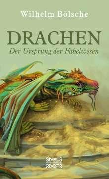 Wilhelm Bölsche: Drachen - Der Ursprung der Fabelwesen, Buch