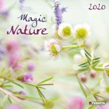 Magic Nature 2020, Diverse