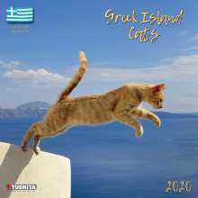 Greek Island Cats 2020 What a Wonderful World, Diverse