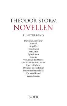Theodor Storm: Novellen fünfter Band, Buch