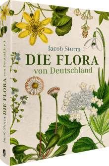 Oliver Tackenberg: Jacob Sturm - Die Flora von Deutschland, Buch