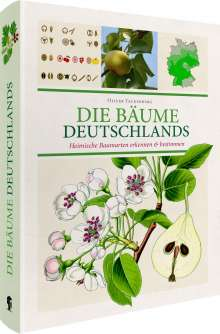 Oliver Tackenberg: Die Bäume Deutschlands, Buch