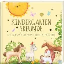 Pia Loewe: Kindergartenfreunde - PFERDE, Buch