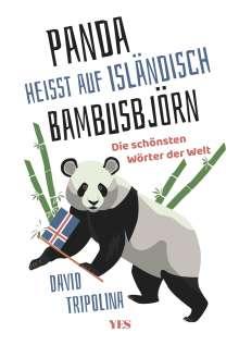 David Tripolina: »Panda« heißt auf Isländisch »Bambusbjörn«, Buch