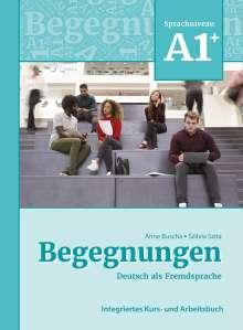 Anne Buscha: Begegnungen Deutsch als Fremdsprache A1+: Integriertes Kurs- und Arbeitsbuch, Buch
