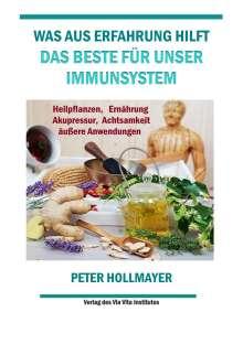 Peter Hollmayer: Was aus Erfahrung hilft, Buch